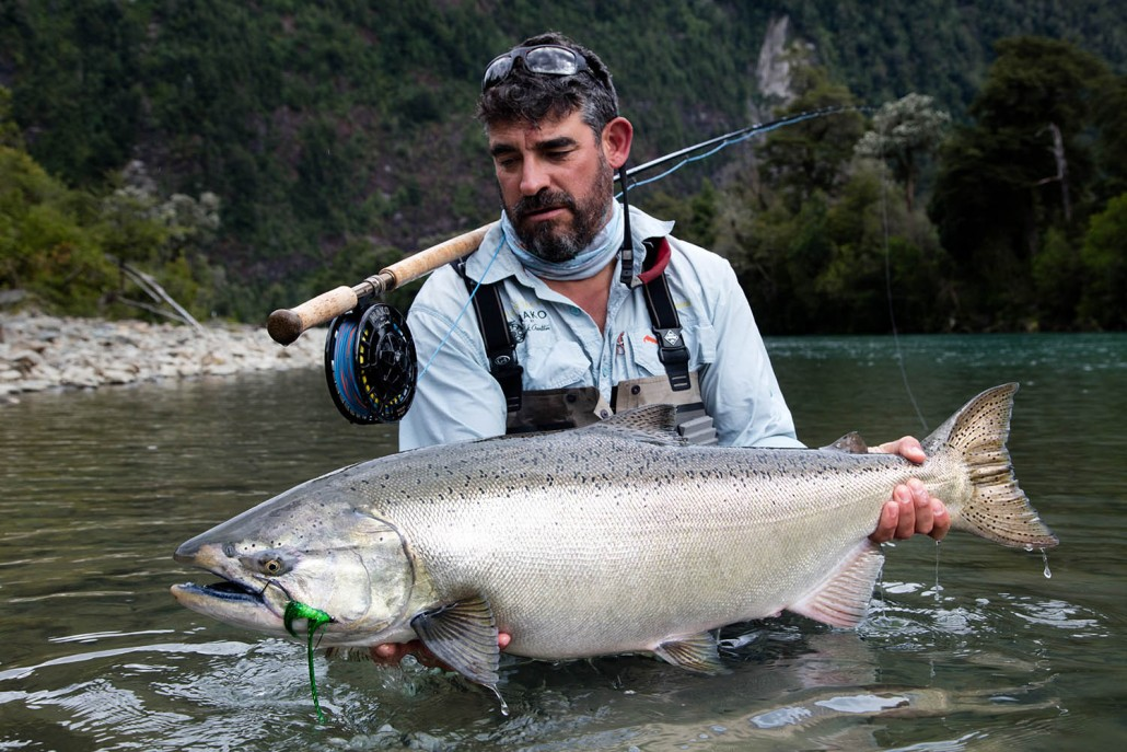 Austral kings chrome king salmon for Kings river fishing